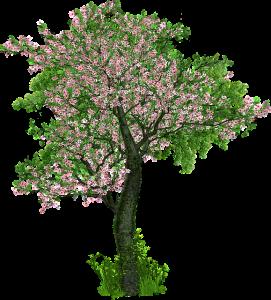 grupo de crecimiento personal. árbol