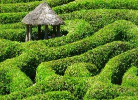 Fotografia de jardin con un laberinto